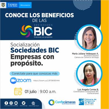 sociedades BIC