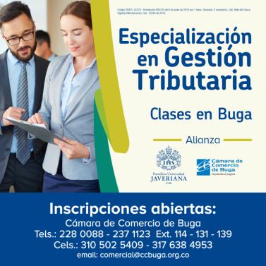especializacion tributaria
