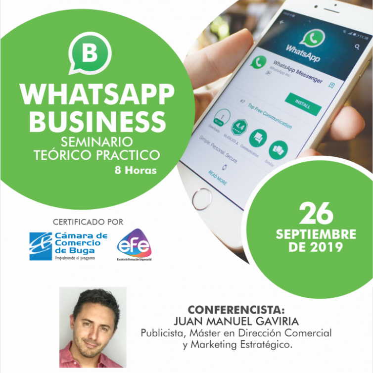 whats app bussiness